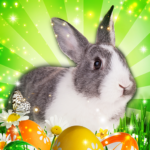 Hidden Object: Easter Egg Hunt APK MOD 1.1.85b