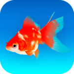 Goldfish 3D – Relaxing Aquarium Fish Tank APK MOD
